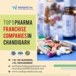 Top 5 Pharma Franchise Companies in Chandigarh